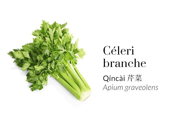Céleri branche - Qíncài - Apium graveolens